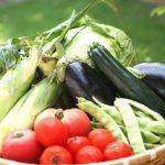 標高が高いと、人も野菜も健やかになる?
